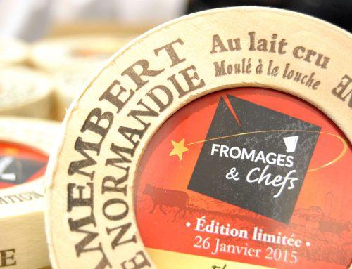 Atelier moulage de camemberts au lait cru de Normandie